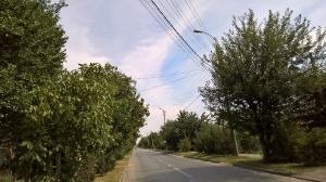 FTTH кабельная паутина над дорогой. Таганрог